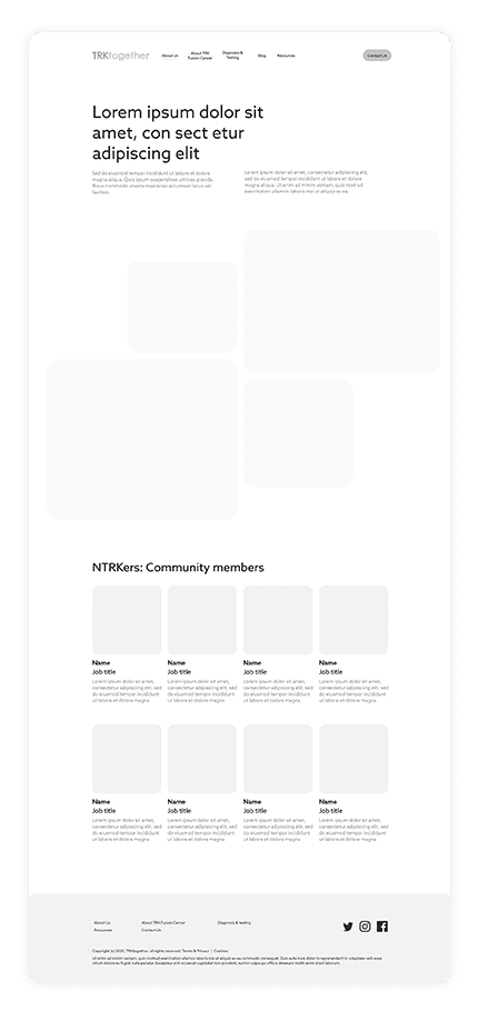 NTRKers - Wireframe - About